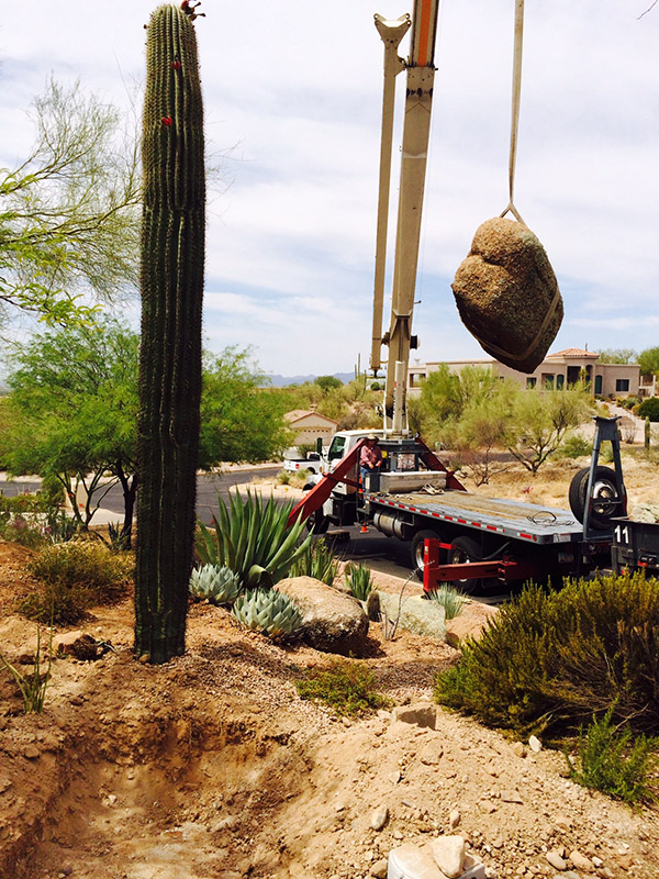 tucson landscaping