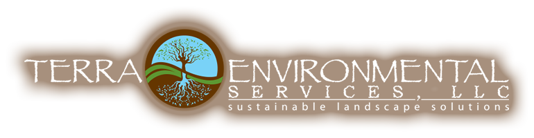 Tucson Landscaping by Terra Environmental Services